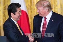 Nhật-Mỹ sẽ thảo luận nhiều vấn đề hợp tác trong chuyến thăm của Tổng thống Trump