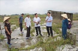 Giá rẻ như cho, diêm dân Thanh Hóa bỏ hoang ruộng muối