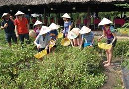 Du lịch nông nghiệp, sinh thái - Bài 2: Tăng cường khai thác chương trình du lịch chuyên đề