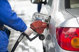Giá dầu giảm do dự trữ các chế phẩm dầu mỏ của Mỹ tăng