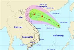 Áp thấp nhiệt đới có thể mạnh lên thành bão, diễn biến rất phức tạp