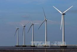 Năng lượng tái tạo- Bài 3: Hình mẫu UAE vượt lên thách thức