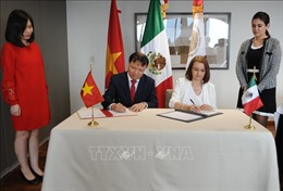 Tập trung nâng cao kim ngạch thương mại hai chiều Việt Nam - Mexico
