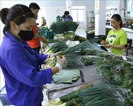 Hành động để chống rác thải nhựa - Bài 1: Thúc đẩy chuyển dịch sang kinh tế xanh