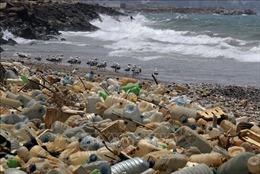 Hành động để chống rác thải nhựa - Bài 3: Rác thải nhựa – Vấn nạn toàn cầu