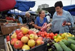 Lãng phí thực phẩm tạo ra 8% lượng khí thái gây hiệu ứng nhà kính