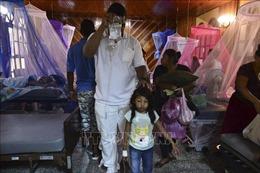 Cảnh báo dịch sốt xuất huyết bùng phát mạnh tại Mỹ Latinh