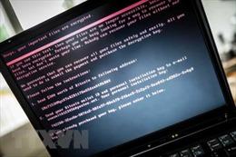 Triều Tiên phản bác báo cáo LHQ về việc Bình Nhưỡng tấn công mạng