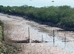 Tìm thấy thi thể nạn nhân bị cuốn trôi trên sông Ka Long, Quảng Ninh