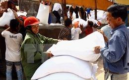 Xuất cấp gạo cho tỉnh Đắk Nông