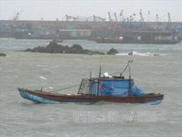 Cảnh báo sóng to, gió lớn ở vùng biển Bình Thuận đến Cà Mau