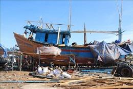 Rà soát, hoàn thiện quy định về mua, bán và hoán cải tàu thuyền