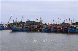 Ứng phó với áp thấp nhiệt đới có thể mạnh lên thành bão: Nghệ An cấm tàu thuyền ra khơi