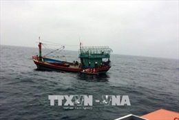Sóng lớn đánh chìm tàu cá, 3 ngư dân thoát nạn
