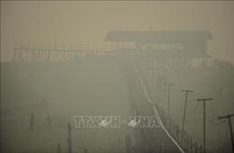 Trên 900.000 người Indonesia bị bệnh về đường hô hấp do cháy rừng