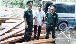 Lợi dụng mưa lớn vận chuyển gỗ trái phép