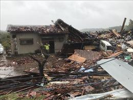Hàng chục người thiệt mang, mất tích vì mưa bão tại Ai Cập, Nhật Bản