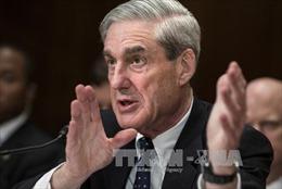 Yêu cầu cung cấp bản điều trần của công tố Mueller để phục vụ điều tra Tổng thống Trump