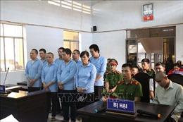 Xét xử vụ tranh chấp đất khiến 8 người thương vong tại Đắk Lắk