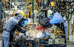 Hãng tư vấn McKinsey đánh giá khả năng phục hồi kinh tế của Việt Nam
