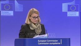 EU và nhiều nước chỉ trích chiến dịch quân sự của Thổ Nhĩ Kỳ