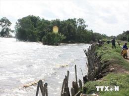 Mực nước trên sông Cửu Long, sông Sài Gòn tiếp tục lên