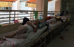 Chín trường hợp tử vong do sốt xuất huyết tại TP Hồ Chí Minh