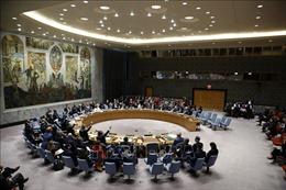 Thổ Nhĩ Kỳ tấn công người Kurd ở Syria: HĐBA quan ngại về tình hình ở Đông Bắc Syria