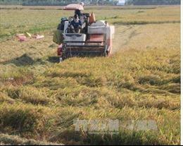 Tháo gỡ khó khăn, thúc đẩy kinh tế nông nghiệp phát triển bền vững