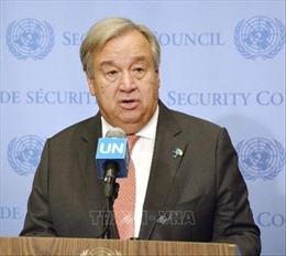HĐBA bị  hối thúc tăng cường phối hợp ngăn ngừa xung đột ở châu Phi