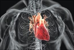 Bộ Y tế khẳng định: Không ghi nhận chủng vi rút 'mới, lạ' gây viêm cơ tim