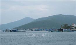Ứng phó bão số 6: Di dời gần 40.000 lồng bè ở huyện Vạn Ninh, Khánh Hoà