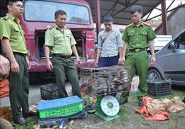 Phòng, chống buôn bán động vật hoang dã - Bài 1: Hệ thống pháp luật tiếp tục được hoàn thiện
