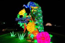 'Bữa tiệc' sắc màu trong 'Khu rừng Ánh trăng'