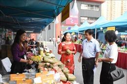 Hà Nội: Nâng chất cho sản phẩm theo chương trình 'Mỗi xã một sản phẩm'