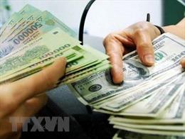 Tỷ giá trung tâm sáng 12/11 tăng 9 đồng, Nhân dân tệ giảm giá