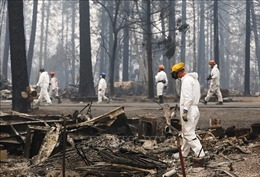 Tổng thống D.Trump sẽ thị sát vùng 'thảm hoạ' cháy rừng tại California