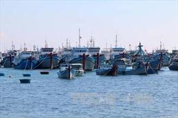 Đầu tư các dự án tại 4 tỉnh miền Trung sử dụng khoản tiền bồi thường của Công ty Formosa