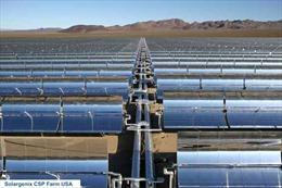 Nhà máy điện mặt trời 'khủng' với 900.000 tấm pin mặt trời lắp đặt trên 260 hécta