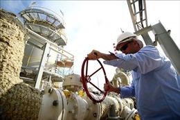 Giá dầu tăng gần 4% lên gần 53 USD/thùng
