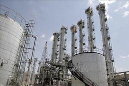 Iran tuyên bố đã làm giàu 24 tấn urani