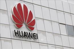 Thêm một nước cấm sử dụng công nghệ của tập đoàn Trung Quốc để nâng cấp dịch vụ 5G