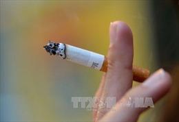 Nhắn tin qua điện thoại để... cai thuốc lá
