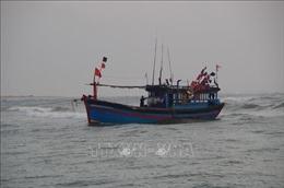 Một tàu cá mắc cạn tại vùng biển Lý Sơn, Quảng Ngãi, khi vào tránh trú bão số 8