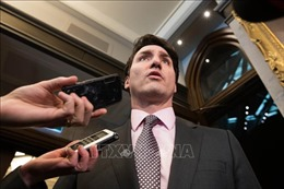 Nhiều bộ trưởng bênh vực Thủ tướng Justin Trudeau trong vụ SNC-Lavalin