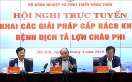 Thủ tướng Nguyễn Xuân Phúc chủ trì hội nghị cấp bách khống chế bệnh dịch tả lợn châu Phi