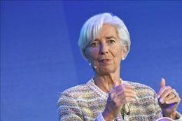 Tổng Giám đốc IMF: Phụ nữ phải được bình đẳng với nam giới