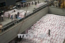 Xuất khẩu gạo của Thái Lan giảm cả về khối lượng và giá trị