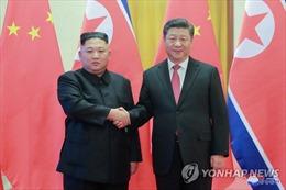 Chủ tịch Trung Quốc và Triều Tiên bắt đầu hội đàm tại Bình Nhưỡng