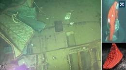Hình ảnh đầu tiên tàu ngầm Indonesia vỡ làm ba ở đáy biển, 53 thuỷ thủ thiệt mạng